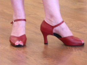 renee's cranberry peep-toe tango shoes